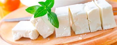 imagenes queso blanco hablamos de quesos y otros l 225 cteos
