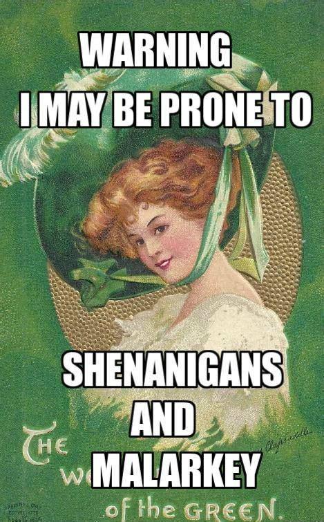 Funny Irish Memes - 76 best images about irish quote on pinterest irish