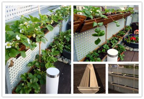 How To Make A Vertical Strawberry Planter by How To Make Diy Vertical Container Strawberry Planters