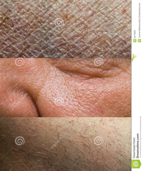 up texture of human skin with pores stock photo royalty free image 133633105 alamy skin texture collection stock image image of caucasian 20119937