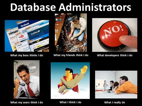 Meme Data Base - what a dba does