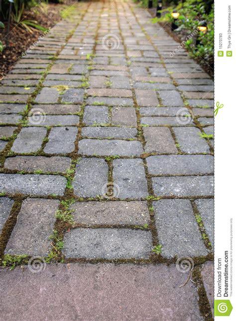 Backyard Concrete Patio Brick Pavers Garden Path Stock Photos Image 15270783