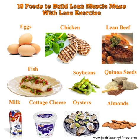 0 protein diet image result for high protein foods for building