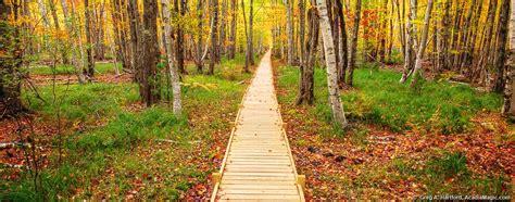 Gardens Of Acadia by Gardens Of Acadia Acadia National Park Maine