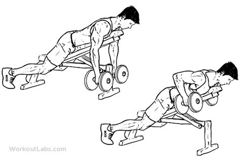 dumbbell incline bench row illustrated exercise guide