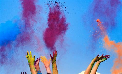 color powder supply co bulk all holi color