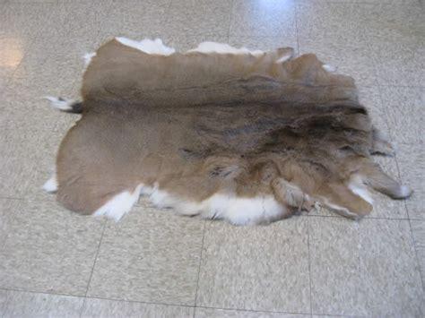 tanned deer hides for sale www f f info 2017