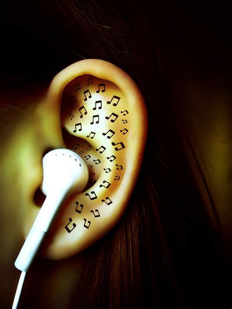 comment d 233 velopper oreille musicale leblogmusique fr