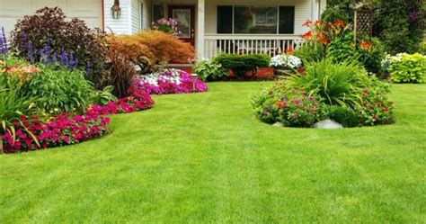 best plants for front yard exterior awesome exterior for small house front yard