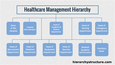 Top Mba In Healthcare Management by Hierarchy Of Health Care Business Management Management