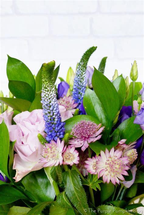 40 discount at appleyard flowers the purple pumpkin blog