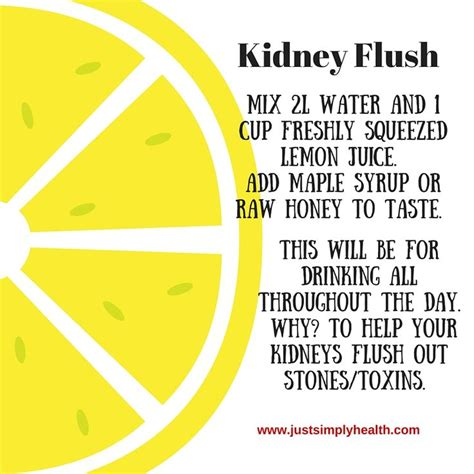 Left Kidney Detox by 25 Best Ideas About Kidney Cleanse On Kidney