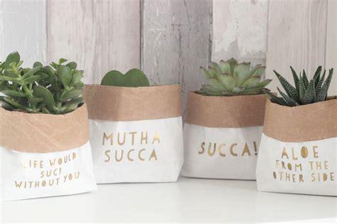 Paper Plant Pots - succulent paper plant pot bag by anders boo