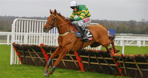 weight management yorkhill 2016 coral hurdle runner profiles ascot entries