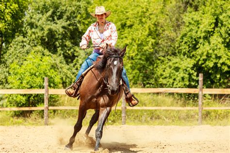 training active ranch horse joint care grand meadows