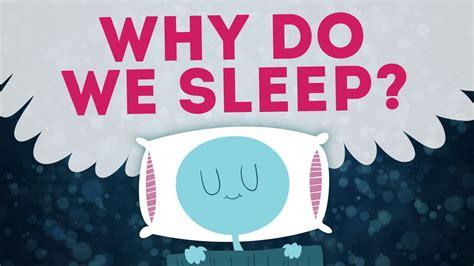 why we sleep the new science of sleep and dreams books science can t explain why we sleep myscienceacademy