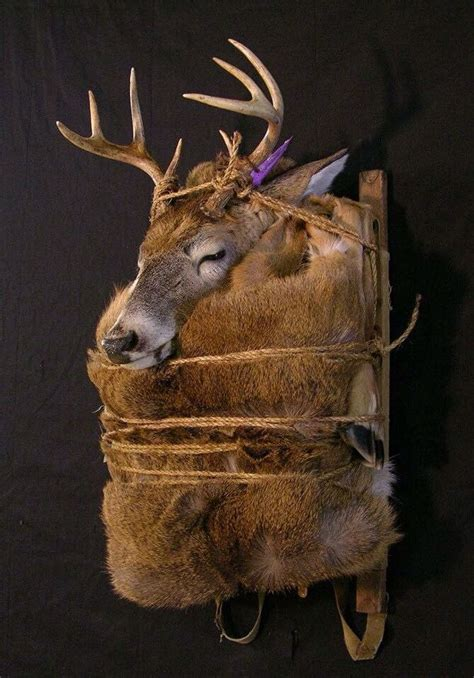 Deer And Doe Deer And Doe Hip Pack Hip Biru 1000 images about taxidermy animals on