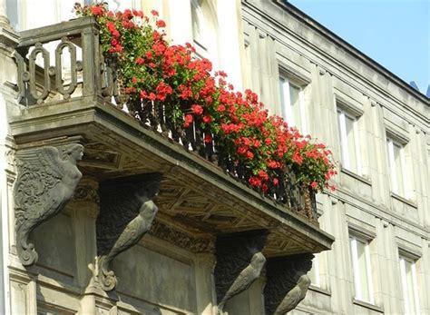 idee terrazzo fiorito fiori da balcone consigli per un balcone fiorito idee green