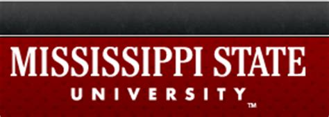 Mississippi State Mba Concentrations by Mississippi State College Of Business