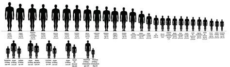 Wallpaper Designs For Kids by Oc Height Chart And Comparison By Iisjah On Deviantart