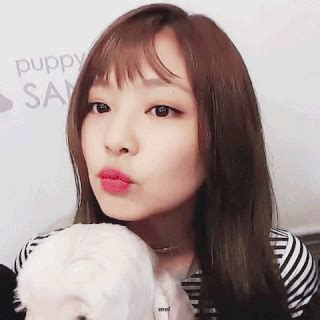 amino jennie gif find & share on giphy