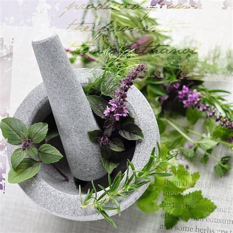 kit fiori di bach healing herbs kit 38 fiori di bach healing herbs prezzi
