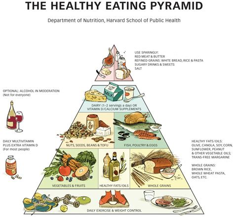 for healthy aging a guide to lifelong well being books healthy plate healthy pyramid the