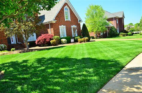 backyard services jardines 191 c 243 mo limpiarlos para tenerlos bonitos wayook