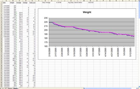 Weight Loss Excel Spreadsheet by The Diet Spreadsheet By Zawodny