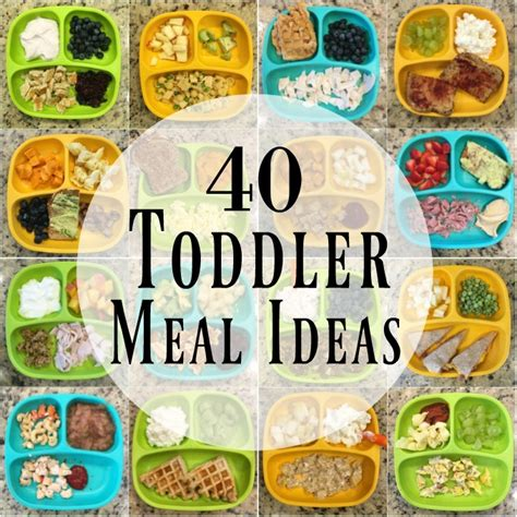 toddler lunch recipes and toddler lunch ideas feed your 40 healthy toddler meals