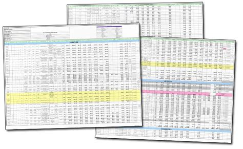 Images Of Spreadsheets by Christine E Scanlon Portfolio Projects