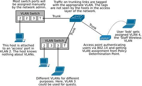 Switch Vlan vlan tutorial with comparing lan vlan and trunk port
