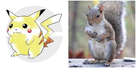 Squirrel Sound Book With Doll pikachu wasn t based on a mouse but a squirrel sound books