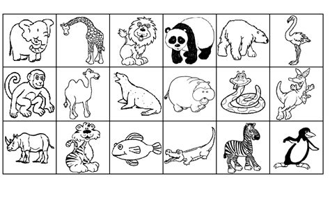 free printable zoo animal pictures zoo bingo pictures to pin on pinterest pinsdaddy