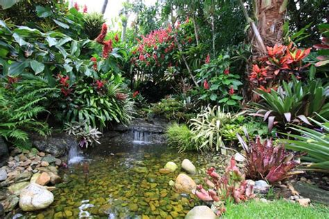 how to create a tropical backyard 100 most creative gardening design ideas 2018 planted well