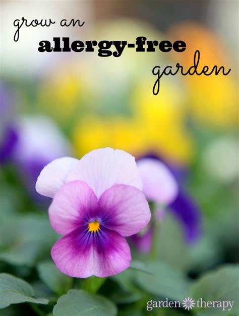 Garden Of Allergy The Top Allergy Fighting Plants For The Home Gardener