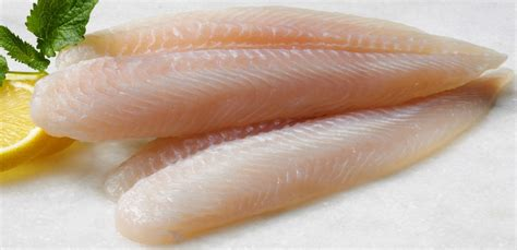 fresh striped bass fillets buy striped bass shopfresh