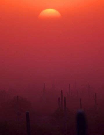 35 best monsoons of arizona images on pinterest