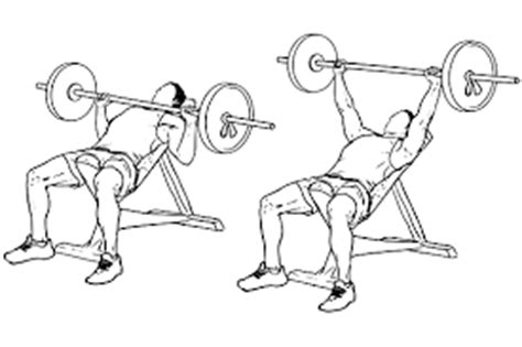 incline bench muscle group 45 minute chest building workout program just fitness