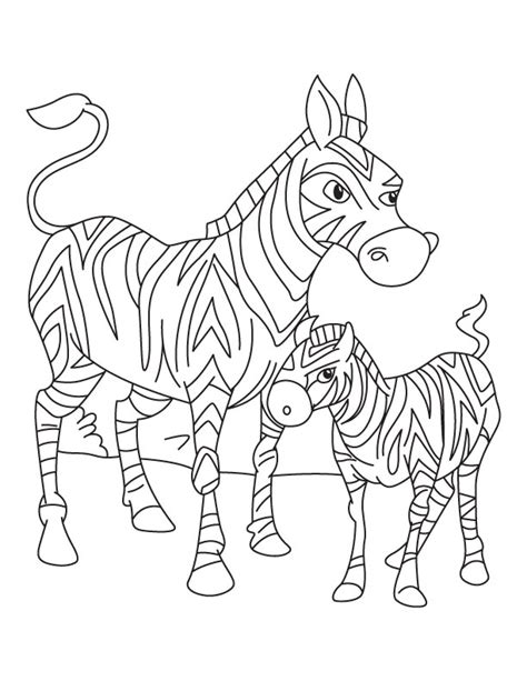 cute baby zebra coloring pages coloring pages