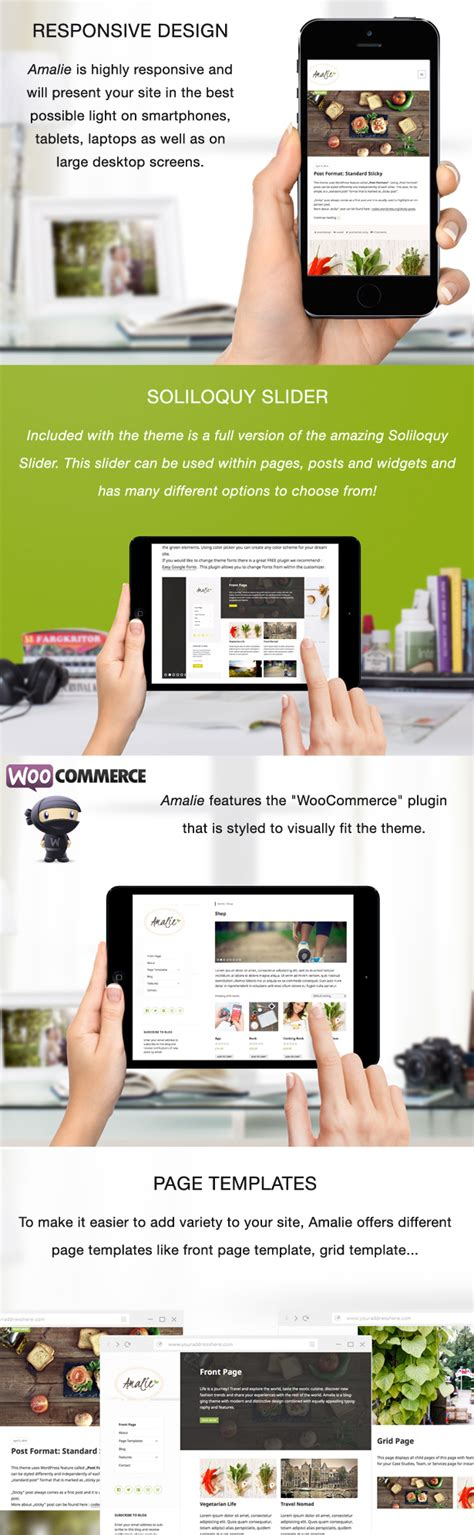 design themes core features plugin wordpress wordpress amalie modern blogging wordpress theme