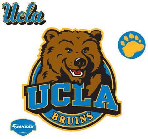 Ucla Background Check Ucla Logo Fathead Ncaa Wall Graphic