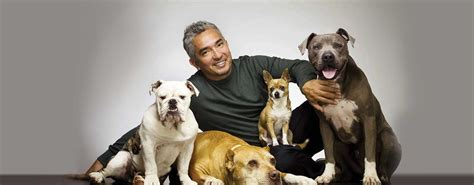 whisperer cesar millan cesar millan live kupferberg center for the arts college