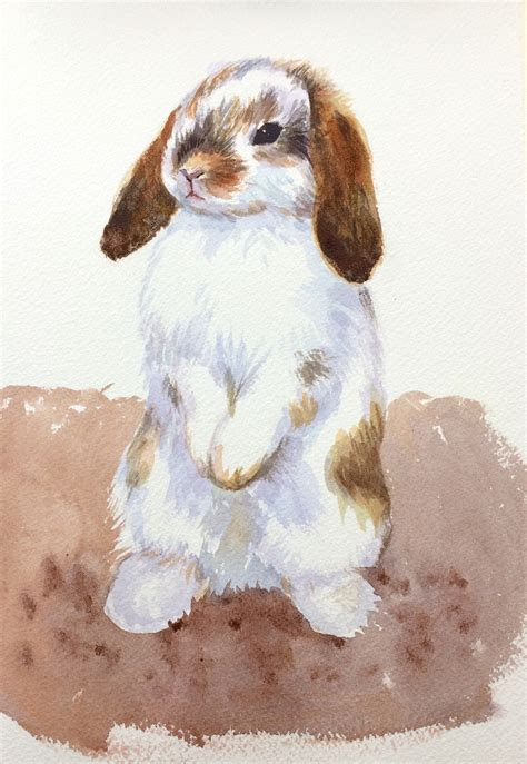 watercolor rabbit tutorial step by step animal portrait of a cute holland lop