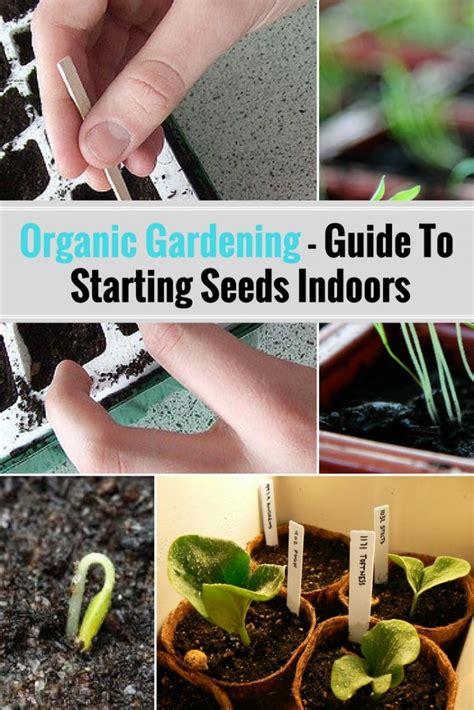 how to start an organic garden in your backyard organic gardening best tips for starting seeds indoors