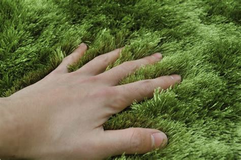 rocca clann rakuten global market grass rug グラスラグ ф