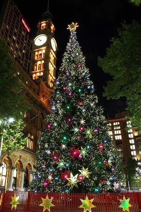 christmas tree in sydney australia crazy for
