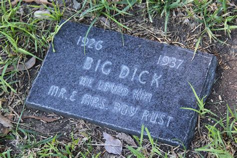pet burial in backyard you will live forever in our hearts photos from a pet cemetery vice