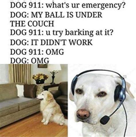 Dog Jokes Meme - the 25 best call center meme ideas on pinterest call