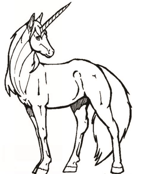 unicorn head coloring pages clipart best